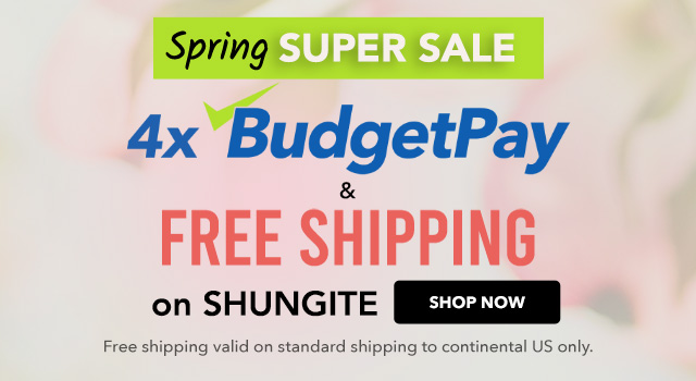 4xBudgetPay and FREE SHIPPING on Shungite
