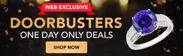 Web Exclusive Doorbusters