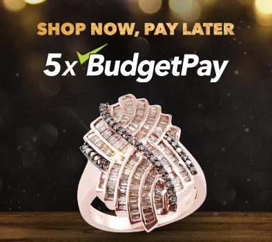 5x BudgetPay